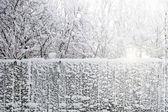 Kış yolu — Stok fotoğraf