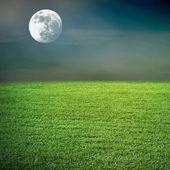 Campo e a lua de noite — Fotografia Stock
