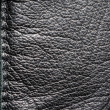Element of the leather cloth — Stock Photo #8761494