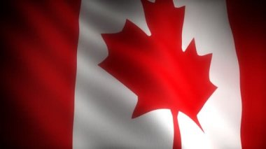 Flag of Canada — Stock Video