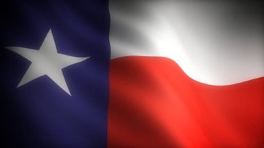 Flag of Texas — Stock Video