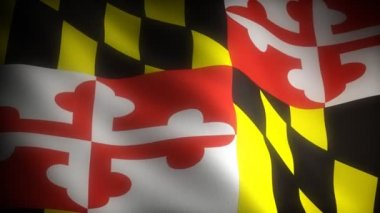 Flag of Maryland — Stock Video