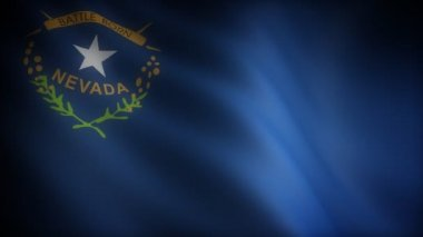 Flag of Nevada — Stock Video #14902387