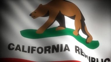 Flag of California — Stock Video
