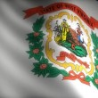 Flag of West Virginia — Stock video