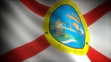 Flag of Florida — Stock Video