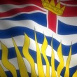Stock Video: Flag of British Columbia