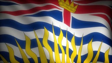 Flag of British Columbia — Stock Video