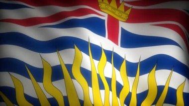 Flag of British Columbia — Stock Video