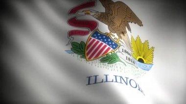 Flag of Illinois — Stock Video