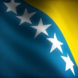 Stock Video: Flag of Bosnia-Herzegovina