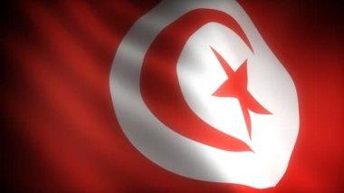 Flagga tunusia — Stockvideo