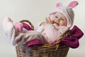 Pink easter rabbit in the basket — Stock Photo