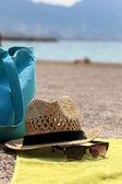 帽子、ビーチバッグ、敷物の上からす — ストック写真