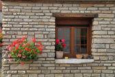 Arranjo de flores caixa de janela, borgonha, frança — Fotografia Stock