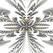 Fabulous symmetric pattern of the leaves. — Stock Photo
