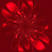 Beautiful lush red flower on red background. — Stock Photo