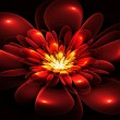 Fractal flower in red and orange. Computer generated graphics. — Stock Photo