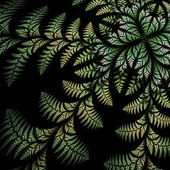 Fabulous asymmetrical pattern of the leaves on black background. — Stock Photo
