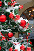 Christmas tree decorated in front of the house — Stock Photo