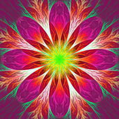 Beautiful fractal flower in pink, red and yellow. — Stock Photo