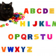 Alphabet letters and black cat on white background. — Stock Photo