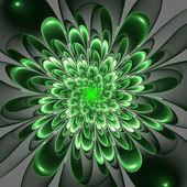 Beautiful lush green flower on gray background. Computer generat — Foto de Stock