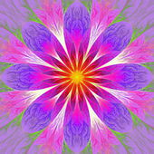Beautiful fractal flower in pink, red and yellow. Computer gener — Stock Photo