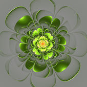 Beautiful green flower on gray background. Computer generated gr — Stock Photo