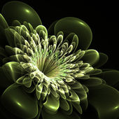 Beautiful green flower on black background. Computer generated g — Stock Photo