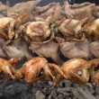 Quail strung on a skewer and grilled in barbecue — Stock Photo #47656773