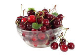 Ripe and juicy cherries in a glass vase on a white background — Stock fotografie