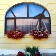Window decoration with flowers — Stock Photo #50295961