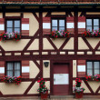 Two rows of windows with flower decoration in  Nuremberg — Stock Photo #51213437