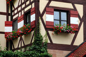 Window decorated with flower in Nuremberg — Stock Photo