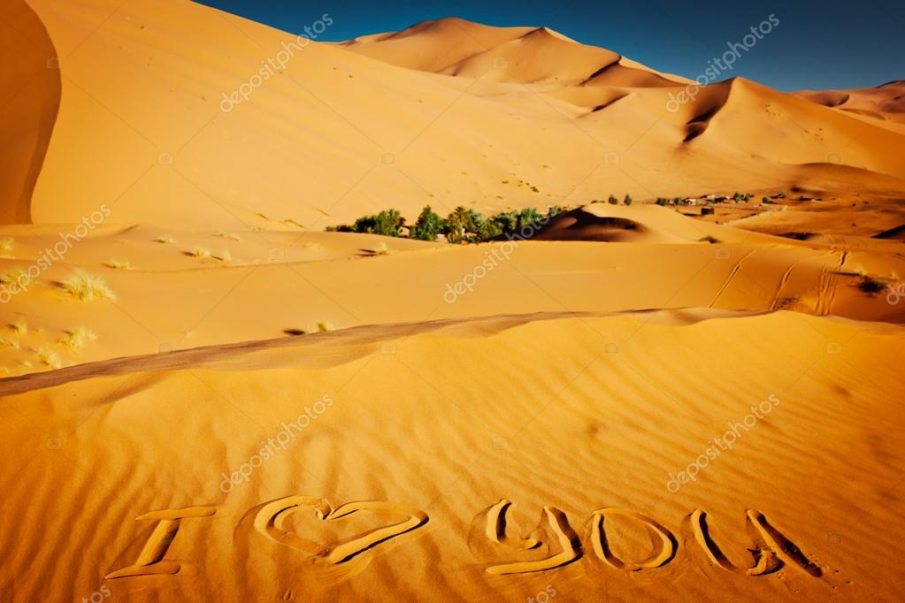 The words &quot;I love you&quot; written in the sand dunes  Stock Photo #16279261