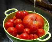 Washing tomatoes — Stockfoto