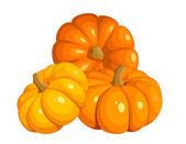 Vector illustration of three pumpkins. — Stock Vector