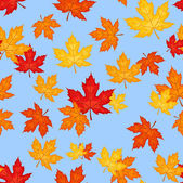 Seamless pattern with autumn maple leaves. Vector illustration. — Stock Vector