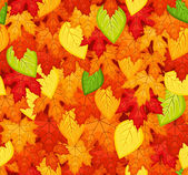 Seamless pattern with colored autumn leaves. Vector illustration. — Stock Vector
