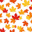 Seamless pattern with autumn maple leaves. Vector illustration. — Stock Vector #12850135