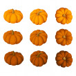 Set of nine pumpkins isolated on white background. Vector illustration. — Stock Vector #13359529