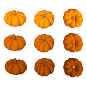 Set of nine pumpkins isolated on a white background. Vector illustration. — Stock Vector