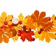 Horizontal seamless background with autumn leaves. Vector illustration. — Stock Vector