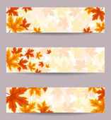 Set of three vector banners (468x120px) with autumn leaves. — ストックベクタ