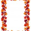 Autumn maple leaves frame. Vector illustration. — Stock Vector #13735143