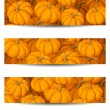 Royalty-Free Stock Vector Image: Three vector banners (468x120px) with orange pumpkins.