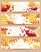 Set of four vector autumn banners (468x120px). — Stock Vector
