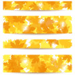 Set of four vector banners with autumn maple leaves. — Stock Vector #13926012