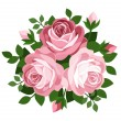 Three pink roses. Vector illustration. - Stock Vector